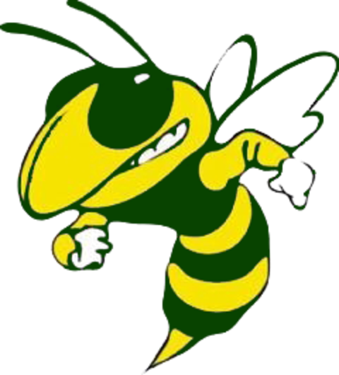 Palo Verde Valley High School mascot