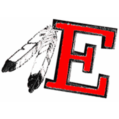 Estelline High School mascot