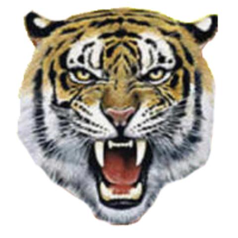 White River High School mascot