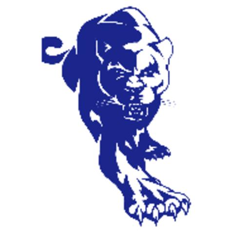 Burke High School mascot