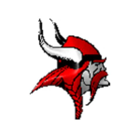 Viborg High School mascot