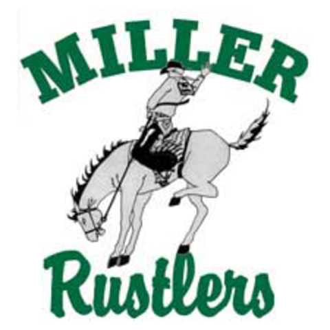 Miller Area High School mascot