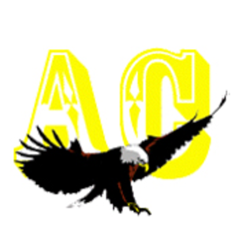 Andes Central High School mascot