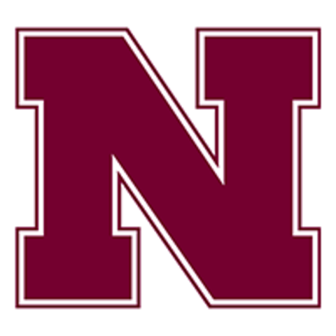 Newell High School mascot