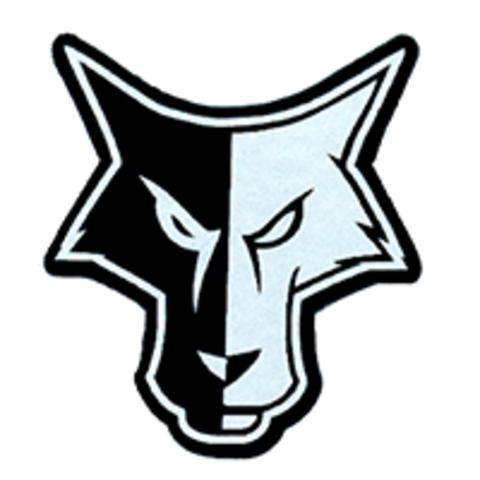 Waverly-South Shore High School mascot
