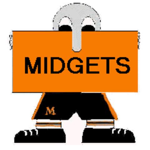 Mclaughlin High School mascot