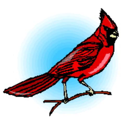 Deuel High School mascot