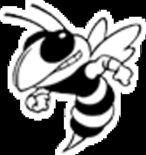 New Lothrop High School mascot