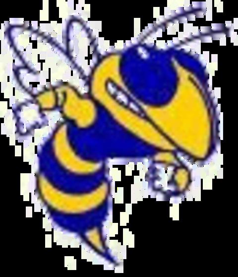 Kearsley High School mascot