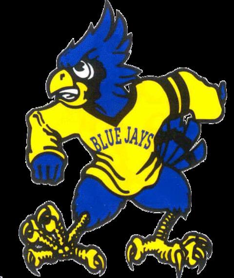 Delphos St. John's mascot