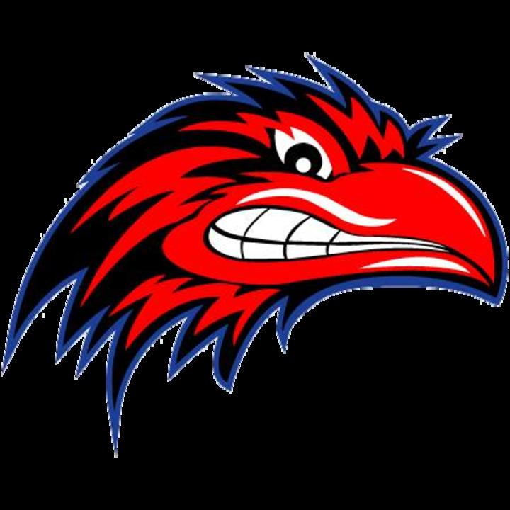 South Carolina Ravens mascot