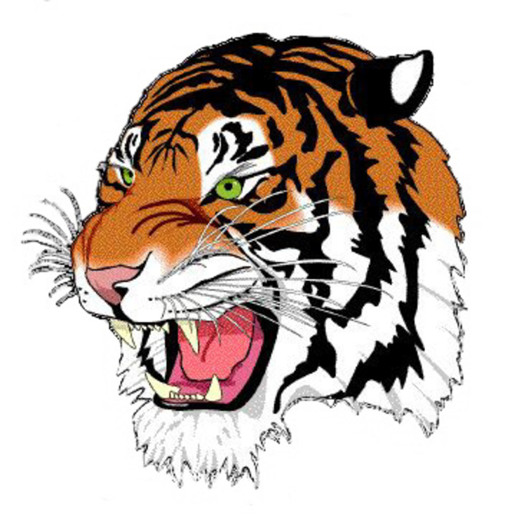 ROWVA High School mascot