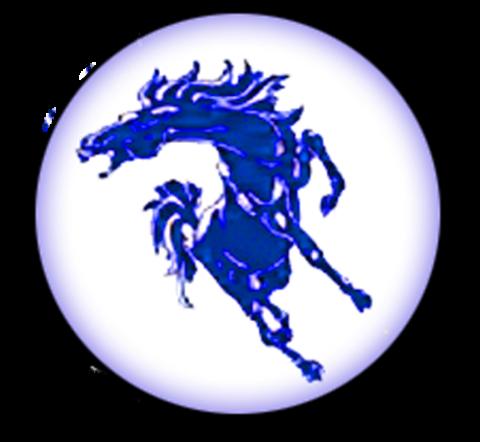 North Mesquite High School mascot