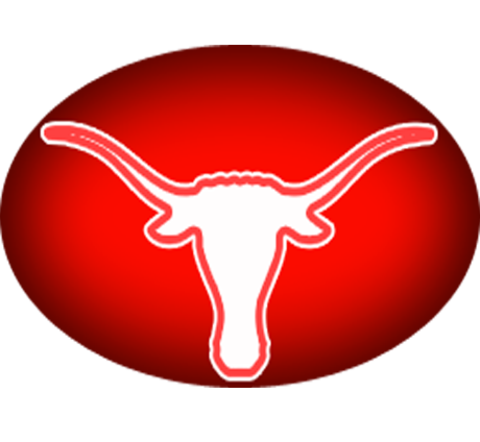 Marshall High School mascot