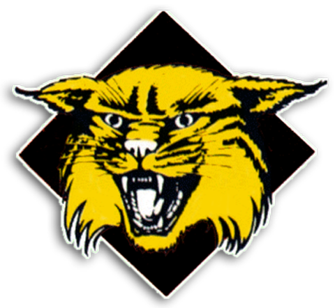 Winona High School mascot