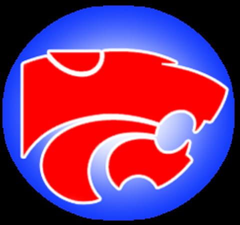 Ford High School mascot