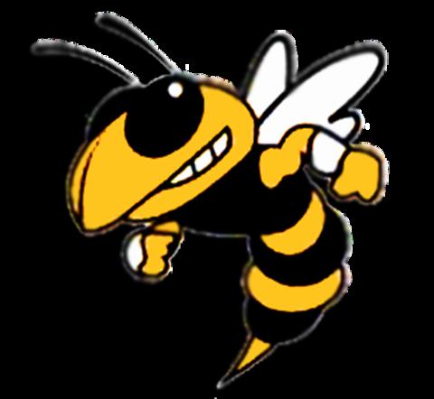 Mineola High School mascot