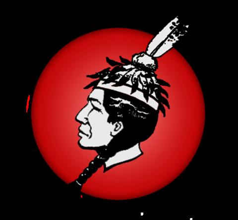 Winnsboro High School mascot