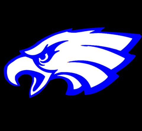 New Diana High School mascot