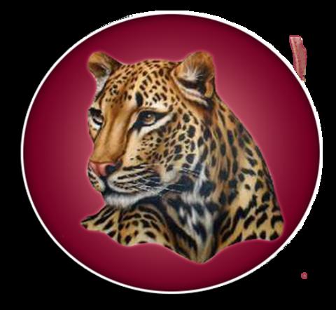 Liberty-Eylau High School mascot
