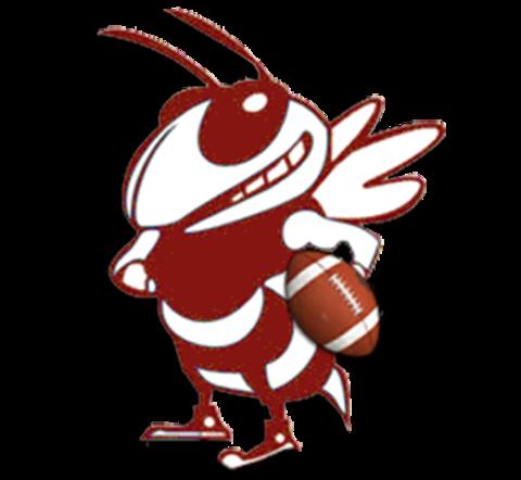 Athens High School mascot