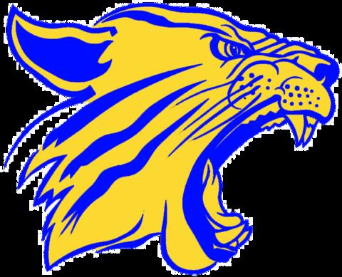 Big Sandy High School mascot