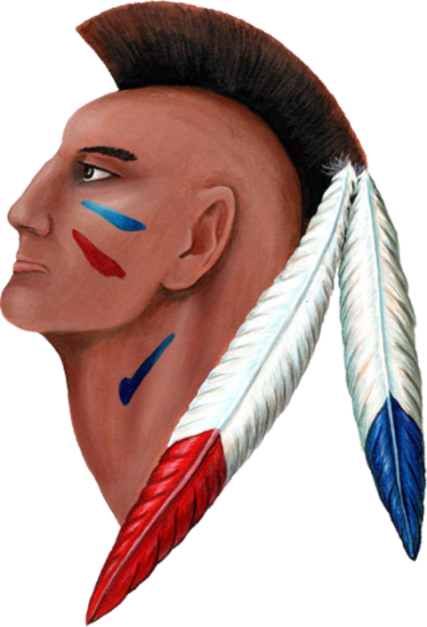Indian Valley High School mascot