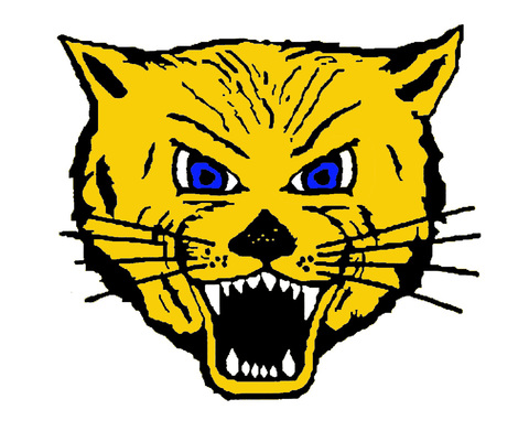 Lake Mills High School mascot