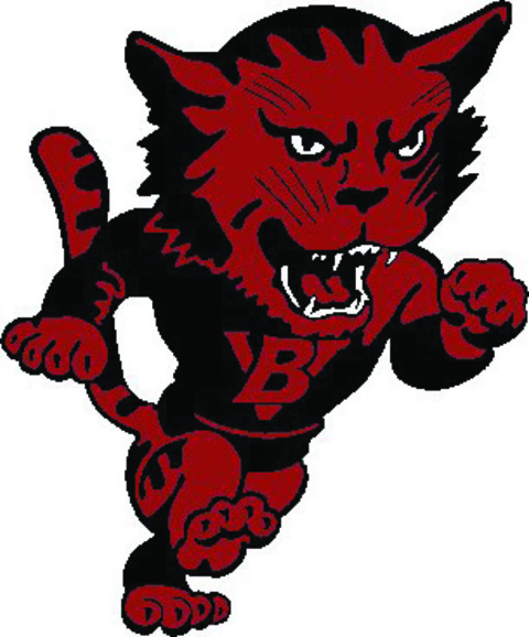 Bay View High School mascot