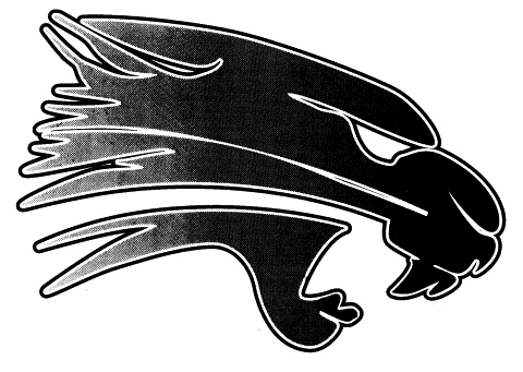 Palmyra-Eagle High School mascot
