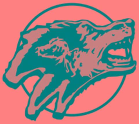 Living Word Lutheran High School mascot
