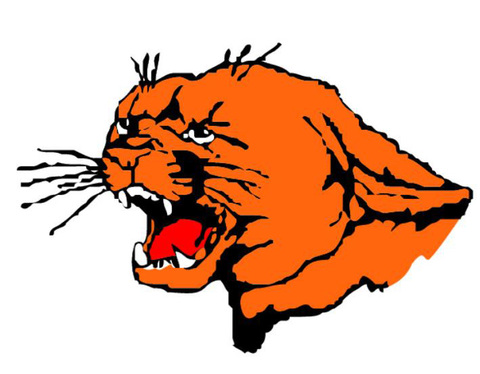 Plymouth High School mascot