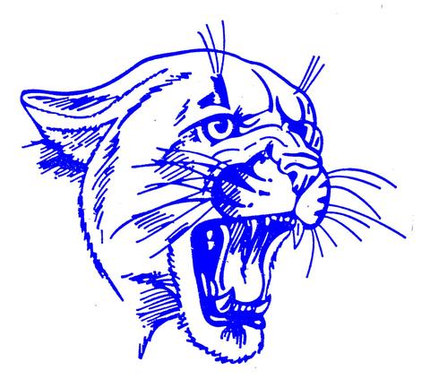 Campbellsport High School mascot