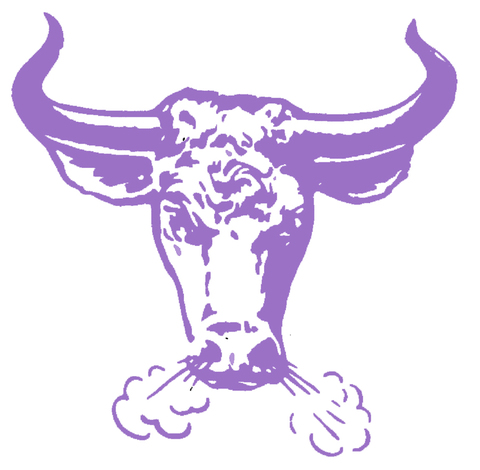 Cudahy High School mascot