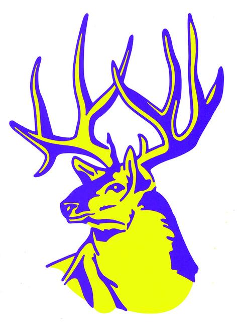 Elkhorn Area High School mascot