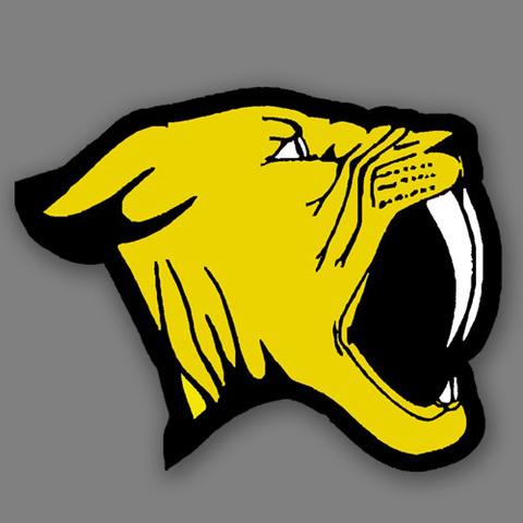 Franklin High School mascot