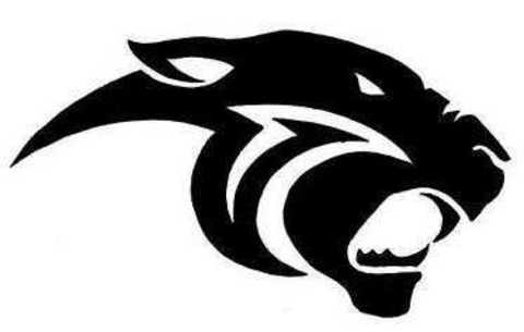 Duval Charter mascot