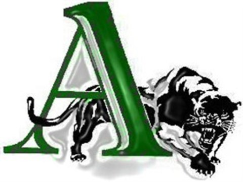 Amphitheater High School mascot