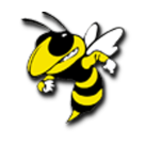 Newark High School mascot