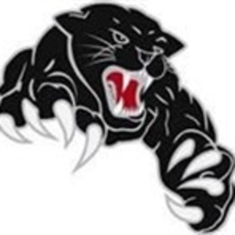 Pomperaug Regional High School mascot