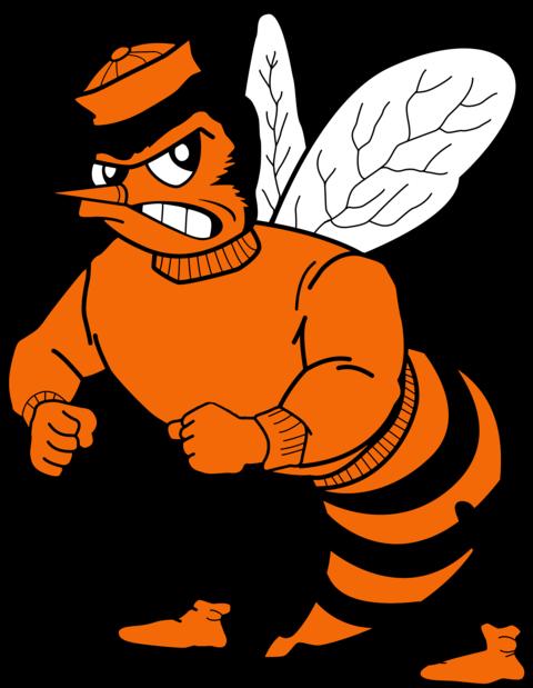 Laneville School mascot