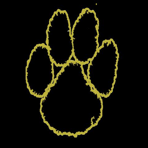 Charleston High School mascot