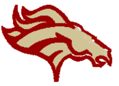 North Marion High School mascot