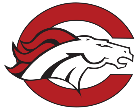 Palm Beach Central High School mascot