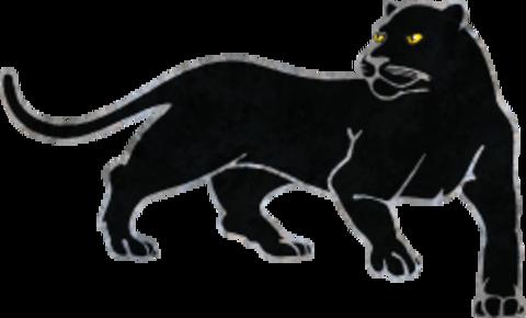 Southwestern College mascot
