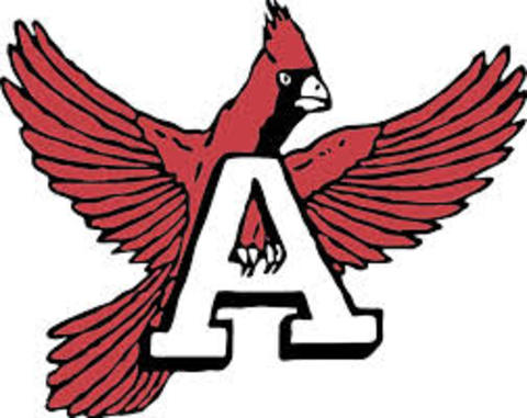 Annandale High School mascot