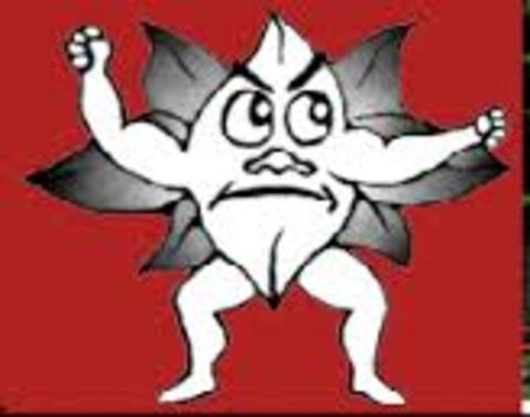 Blooming Prairie High School mascot