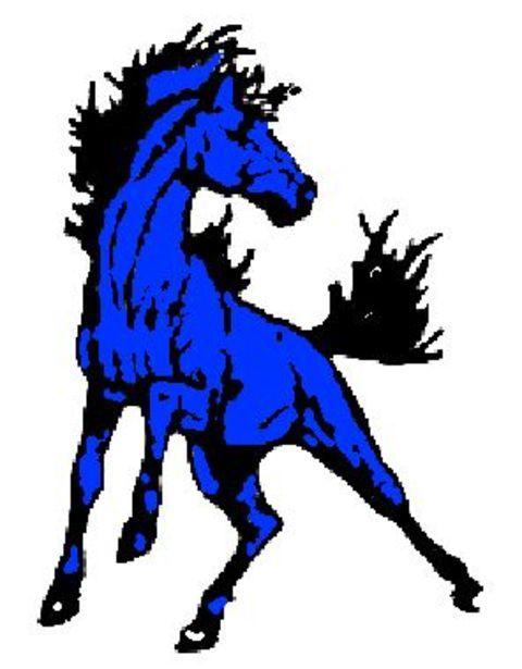 Buffalo Lake-Hector-Stewart High School mascot
