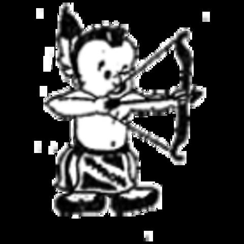 North Douglas High School mascot
