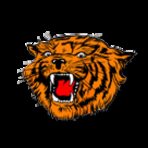 Delmar High School mascot